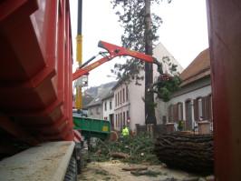 Wagner Energieholz GmbH - Mammut